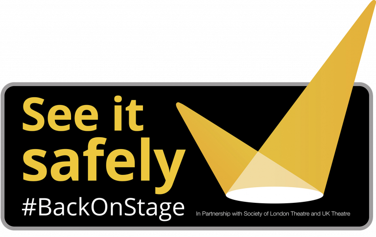 See it safely logo
